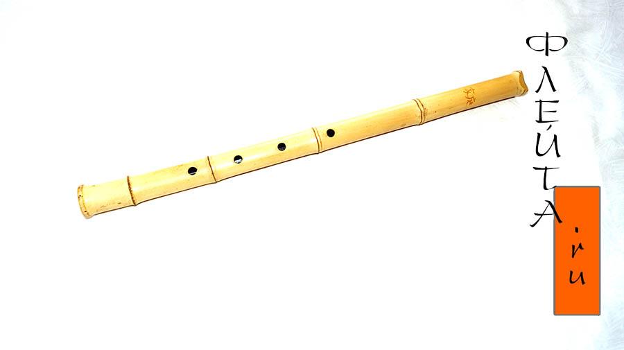 Флейта из бамбука своими руками чертежи 39